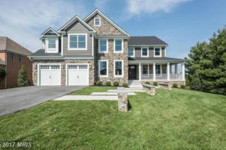 3602 Willow Birch Drive, Glenwood, MD 21738 (#HW9921961) :: Pearson Smith Realty