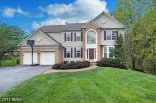6455 Galway Drive NW, Clarksville, MD 21029 (#HW9922129) :: Pearson Smith Realty
