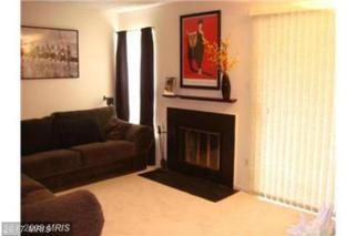 11530 Little Patuxent Parkway #202, Columbia, MD 21044 (#HW9922166) :: LoCoMusings