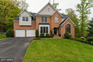 7317 Wood Rush Court, Elkridge, MD 21075 (#HW9927062) :: Pearson Smith Realty