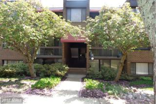 8715 Hayshed Lane #21, Columbia, MD 21045 (#HW9928640) :: Pearson Smith Realty