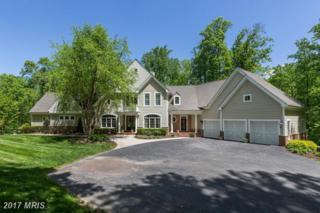 4216 Buckskin Lake Drive, Ellicott City, MD 21042 (#HW9930297) :: Pearson Smith Realty