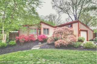 9477 Wandering Way, Columbia, MD 21045 (#HW9930674) :: Pearson Smith Realty