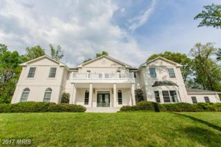 3655 Sycamore Valley Run, Glenwood, MD 21738 (#HW9932303) :: Pearson Smith Realty