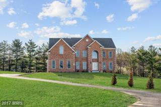 4055 Candle Light Drive, Dayton, MD 21036 (#HW9932773) :: Pearson Smith Realty