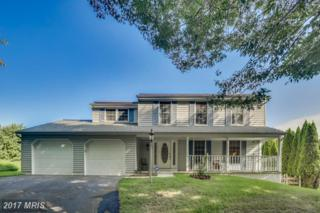 3326 Cara Court, Ellicott City, MD 21043 (#HW9934906) :: Pearson Smith Realty
