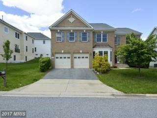 8148 Winding Ross Way, Ellicott City, MD 21043 (#HW9937534) :: Pearson Smith Realty