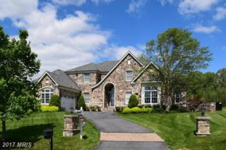 4954 Valley View Overlook, Ellicott City, MD 21042 (#HW9937891) :: Pearson Smith Realty