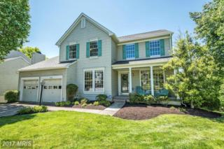 6405 Old Romance Row, Columbia, MD 21044 (#HW9938812) :: Pearson Smith Realty