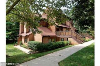7514 Sweet Hours Way E, Columbia, MD 21046 (#HW9940975) :: Pearson Smith Realty