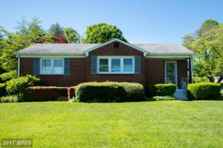 10483 Clarksville Pike, Ellicott City, MD 21042 (#HW9941032) :: Pearson Smith Realty