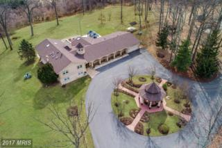 1563 Old Annapolis Road, Woodbine, MD 21797 (#HW9942708) :: Pearson Smith Realty