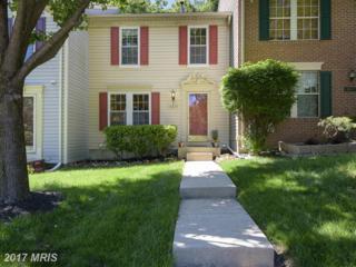 6607 Cambria Terrace, Elkridge, MD 21075 (#HW9943272) :: Pearson Smith Realty