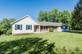 920 Windriver Drive, Sykesville, MD 21784 (#HW9944140) :: Pearson Smith Realty
