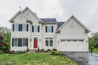 4922 Silver Sage Drive, Ellicott City, MD 21043 (#HW9945501) :: Pearson Smith Realty