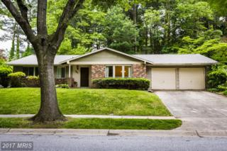 10651 Green Mountain Circle, Columbia, MD 21044 (#HW9946652) :: Pearson Smith Realty