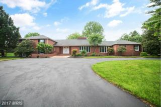 4200 Heritage Hill Lane, Ellicott City, MD 21042 (#HW9947165) :: Pearson Smith Realty