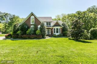 2095 Mount Hebron Drive, Ellicott City, MD 21042 (#HW9948640) :: Pearson Smith Realty