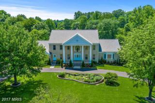 1710 Willow Springs Drive, Sykesville, MD 21784 (#HW9949800) :: Keller Williams Pat Hiban Real Estate Group