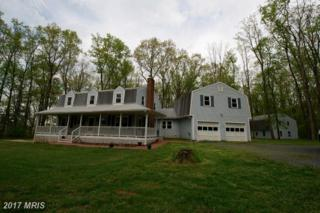 1615 Old Annapolis Road, Woodbine, MD 21797 (#HW9949878) :: Pearson Smith Realty