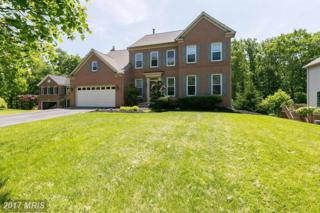 6209 Graftons View Court, Elkridge, MD 21075 (#HW9950164) :: Pearson Smith Realty