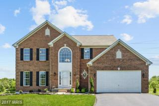 8133 High Meadow Court, Ellicott City, MD 21043 (#HW9950354) :: Pearson Smith Realty