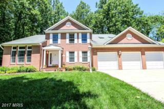 6034 Red Clover Lane, Clarksville, MD 21029 (#HW9950576) :: Keller Williams Pat Hiban Real Estate Group