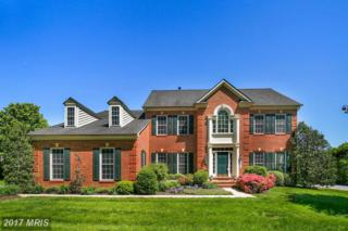 16204 Carrs Mill Road, Woodbine, MD 21797 (#HW9950701) :: Pearson Smith Realty