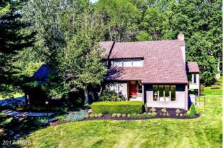 13171 Holly Loch Lane, Highland, MD 20777 (#HW9950830) :: Keller Williams Pat Hiban Real Estate Group
