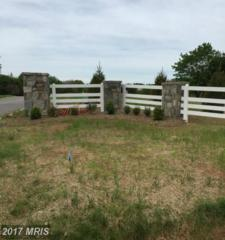 Triadelphia Mill Road, Clarksville, MD 21029 (#HW9951150) :: Pearson Smith Realty