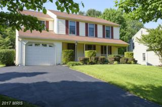 10850 Green View Way, Columbia, MD 21044 (#HW9951309) :: Pearson Smith Realty