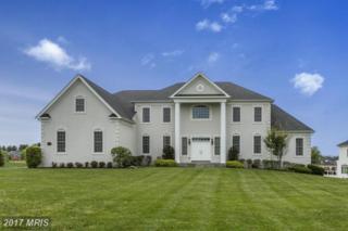 14525 Edgewoods Way, Glenelg, MD 21737 (#HW9951472) :: Keller Williams Pat Hiban Real Estate Group