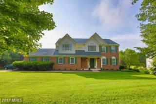 901 Lady Anne Court, Mount Airy, MD 21771 (#HW9953145) :: Keller Williams Pat Hiban Real Estate Group
