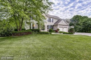 6572 Ballymore Lane, Clarksville, MD 21029 (#HW9953191) :: Keller Williams Pat Hiban Real Estate Group
