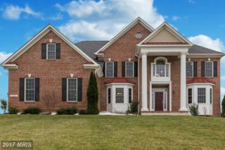 14427 Frederick Road, Cooksville, MD 21723 (#HW9954535) :: Pearson Smith Realty