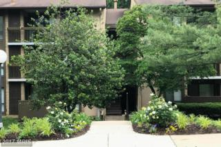 5901 Tamar Drive #9, Columbia, MD 21045 (#HW9954951) :: Pearson Smith Realty