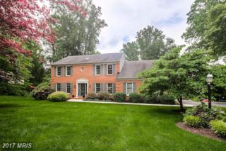 2815 Green Shade Court, Ellicott City, MD 21042 (#HW9955505) :: Pearson Smith Realty