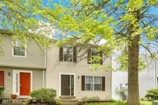 4687 Hallowed Stream, Ellicott City, MD 21042 (#HW9956065) :: Pearson Smith Realty