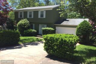 5226 Lightning View Road, Columbia, MD 21045 (#HW9956243) :: Pearson Smith Realty