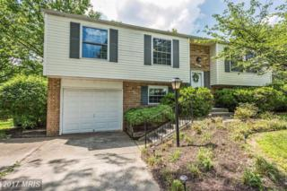 6425 Elffolk Terrace, Columbia, MD 21045 (#HW9957517) :: Pearson Smith Realty
