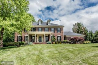 1709 Willow Springs Drive, Sykesville, MD 21784 (#HW9958392) :: Pearson Smith Realty