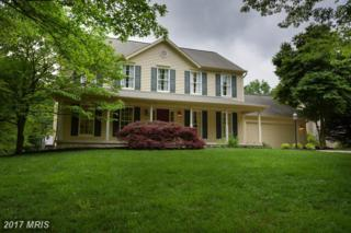 9844 Diversified Lane, Ellicott City, MD 21042 (#HW9958882) :: Pearson Smith Realty
