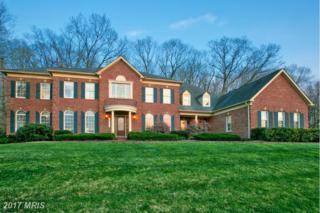 14033 Big Branch Drive, Dayton, MD 21036 (#HW9960273) :: Keller Williams Pat Hiban Real Estate Group