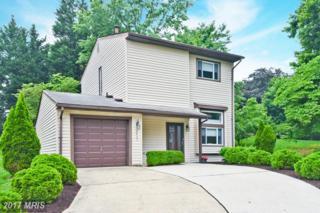 9621 Pastora Place, Columbia, MD 21045 (#HW9960923) :: Keller Williams Pat Hiban Real Estate Group