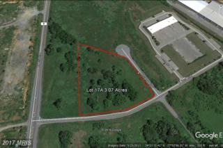 Burr Boulevard W, Kearneysville, WV 25430 (#JF9847780) :: Pearson Smith Realty
