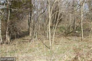 Deep Wood Trail, Shepherdstown, WV 25443 (#JF9855900) :: Pearson Smith Realty