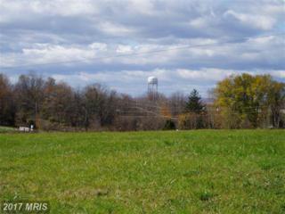 Charles Town Road, Kearneysville, WV 25430 (#JF9887606) :: LoCoMusings