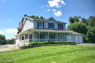 64 Pheasant Hill Road, Summit Point, WV 25446 (#JF9949752) :: Pearson Smith Realty