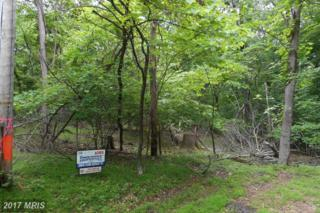 Woodcutters Lane, Harpers Ferry, WV 25425 (#JF9951363) :: Pearson Smith Realty