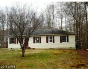 10355 Bunting Road, Chestertown, MD 21620 (#KE9856919) :: Pearson Smith Realty